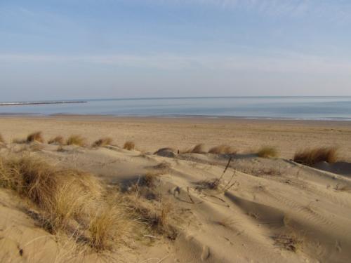 Dune a Eraclea Mare